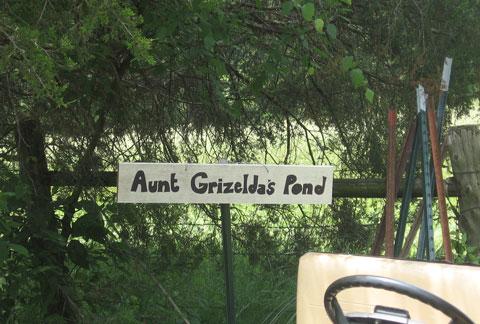 Aunt G's Pond